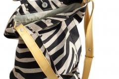 zebra pas_03